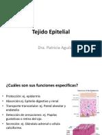 ClaseIITejidoEpitelialETMP098.pdf