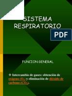 ClaseRespiratorio
