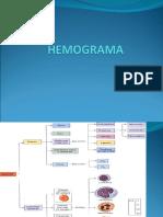 HEMOGRAMA Presentation1