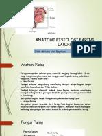 Anatomi laring krisna.pptx