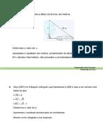 Matematica 8º Ano - Ficha Preparação teste Fevereiro 8º