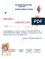 certificado ovinos unibol