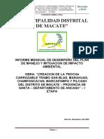 INFORME AMBIENTAL OCTUBRE.docx