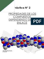 PRÁCTICA Nº2 ENLACE.pdf