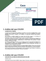 COLDEX y HEINEKEN.pptx