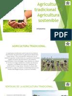 Agricultura tradicional VS Agricultura sostenible yuliana