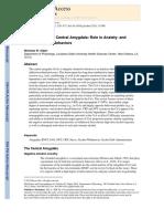 Neuropeptides in Central Amygdala