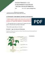 Plan de Mejoramiento Biología Química Física 903