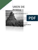 Nuevo Dictamen Auditoria (5 parráfos)