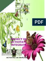 proiect fluturi.docx