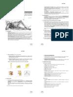 Anatomia Módulo-1.pdf