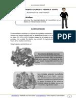 GUIA_DE_APRENDIZAJE_HISTORIA_8BASICO_SEMANA_25_AGOSTO.pdf