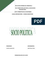ensayo de socio politica