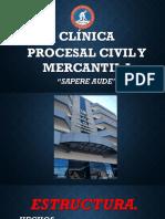 CLINICA PROCESAL CIVIL Y MERCANTIL II