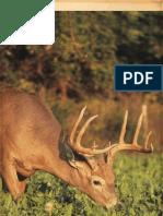 Biologic Brochure