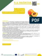 Melocotón Nectarina