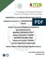 CHILE DULCE