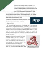 Biomoleculas presentes en el crecimiento y desarrollo del Pato doméstico.docx