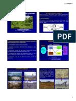 Sistema-Agroflorestal-Sistemas-Agroflorestais.pdf
