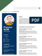 Exemple de CV Commercial Gratuit à Télécharger | Modèle CV Word.pdf