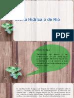 Oferta Hídrica o de Rio