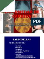 ENF DE CARRION
