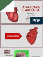 ÁLBUM ANATOMIA DEL CORAZÓN PDF.pdf