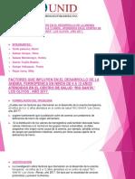 mercurio tesis.pptx