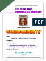 EL MEDIO AMBIENTE - entregado.docx