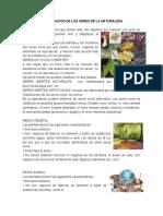 CLASIFICACION DE LOS SERES DE LA NATURALEZA