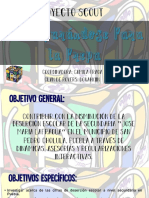 Proyecto Scout PPP