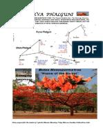 11 Purva Phalguni.pdf