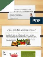 La reproducción sexual en plantas con flor.pptx