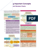 audit-notes-12-pages