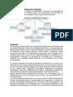 SINDROME DE CONSOLIDACION PULMONAR.