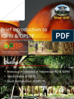 General Overview on Indonesian PO Industry - IOPRI - OPSTP.pptx