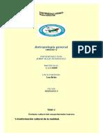 ANTROPOLOGIA  V.docx