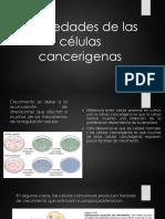 Propiedades de Las Células Cancerigenas