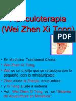 -Los-Microsistemas-de-La-Oreja-.ppt