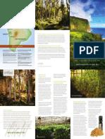 co-impact-brochure-hawaii.pdf