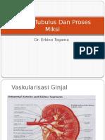 Fungsi Tubulus Dan Proses Miksi.pptx