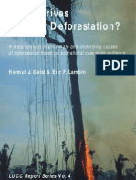 What Drives Tropical Deforestation?
