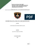 S3 PNP DELGADO PANDURO DIEGO ALDAIR - INFORME E INVESTIGACION- ECHO