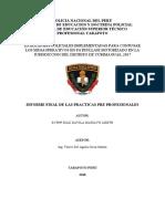 S3 PNP DIAZ DAVILA MARILYN LIZETH - INFORMTE  Y MONOGRAFA - ECHO