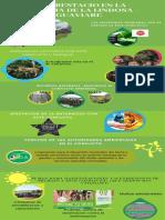 deforestacio en la serrania de la lindosa - guaviare(1).pdf