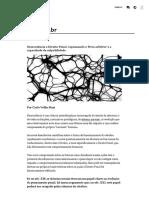 Neurociência e Direito Penal_ repensando o 'livre arbítrio' e a capacidade de culpabilidade