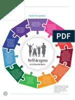 Perfil de egreso.pdf
