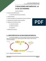 TEMA 13 las reacciones enzimáticas.pdf