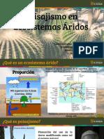 Paisajismo en Ecosistemas Aridos