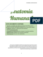 wuolah-free-ANATOMÍA HUMANA I.pdf